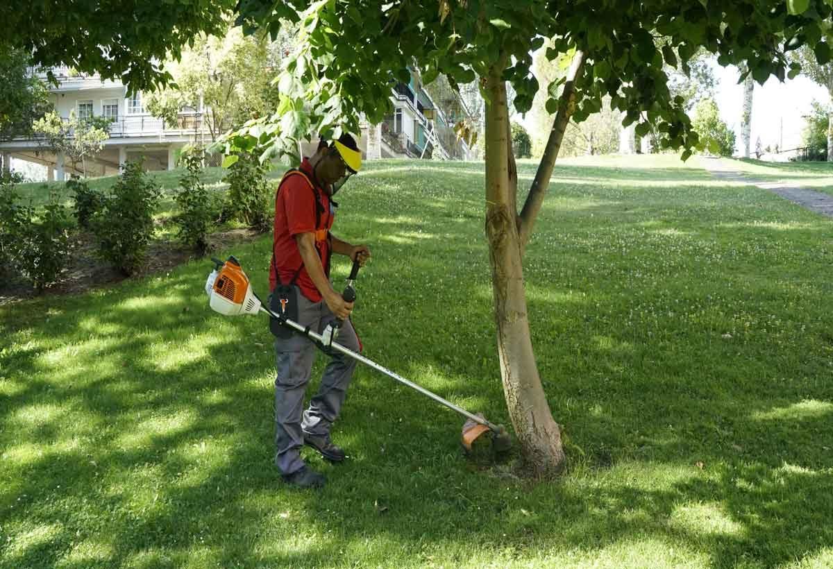 cuidamostuhogar-mantenimiento-jardines